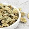 White Chrysanthemum Malaysia Premium Grade Offers