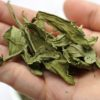 SweetLeaf Natural Stevia Leaf Tea 甜菊叶茶 Cheap SweetLeaf Natural Stevia Leaf Promotion